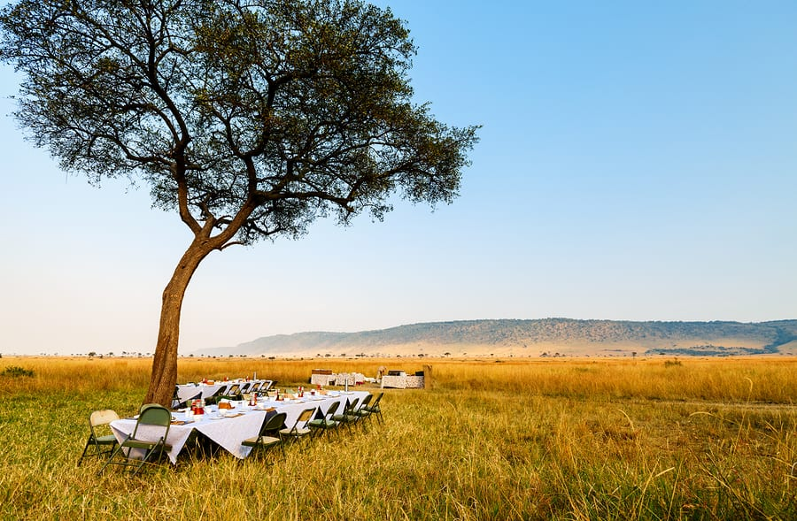4 Types of Safaris and How to Choose the Best One